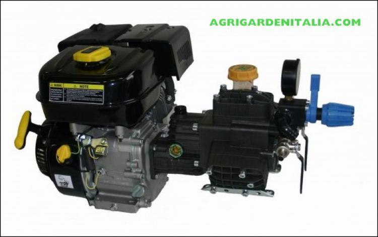 Motopompa benzina pompa bertolini pa 330 negozio online for Pompe laghetti prezzi